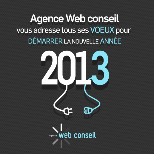 voeux agence web conseil 2013